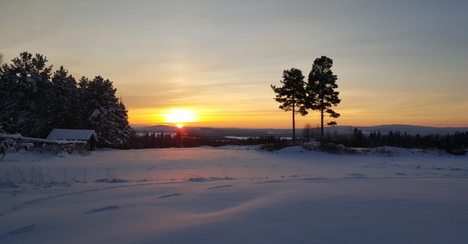 sveg snö solnedgång
